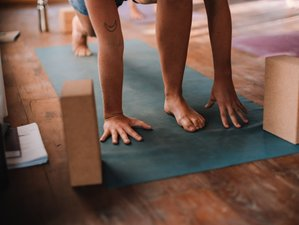 10 Day 100-Hour Sequencing and Adjustment Yoga Teacher Training in Nusa Lembongan, Bali