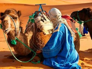 12 Day Morocco Food & Cultural Tour