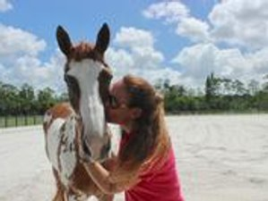 3 Day Breathing in Gratitude Horse-Facilitated Wellness Retreat in Loxahatchee Groves, Florida