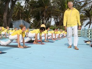 28 Days Advanced Yoga Teacher Training Course in New Providence, Bahamas