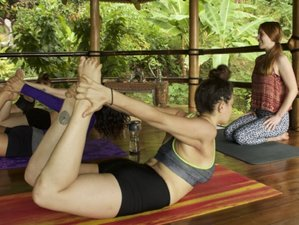 28 Days 200-Hour Nature Yoga Teacher Training in Costa Rica