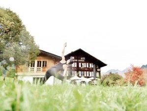 4 Day Yoga, Breathwork, Yoga, Meditation in Swiss Mountain Lodge