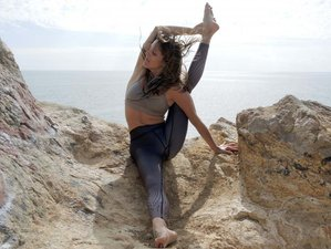 22 Day Elements of Yoga 200-Hour Yoga Teacher Training and Retreat in Goa
