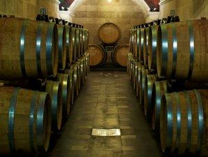 6 Days Unforgettable Wine Tour in Salerno, Italy