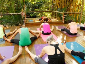 8 Day Juice Detox Retreat with Yoga in Dominical, Puntarenas
