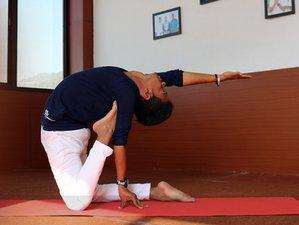 12 Days Yogic Journey 100 Hours Yoga Teacher Training in Rishikesh, India