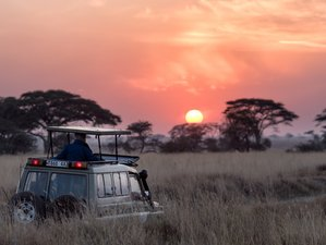Planning: Short Safaris