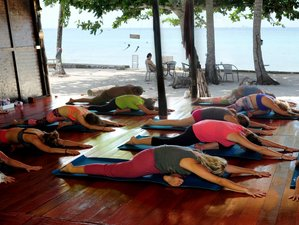 13 Days Awakening Detox and Yoga Retreat in Surat Thani, Thailand