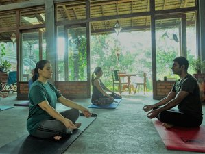 7 Days Freedom and Rejuvenation Yoga Retreat in Bali, Indonesia