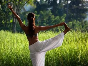 28 Days 200 Hour Yoga Teacher Training in Goa, India