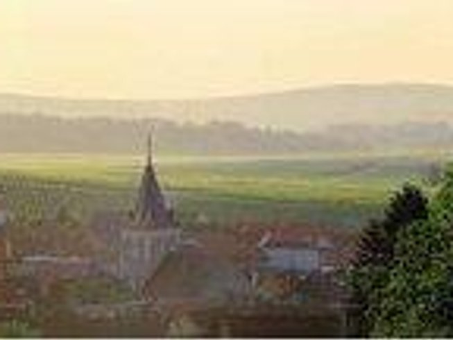 3 Days Champagne Tasting in Reims, France
