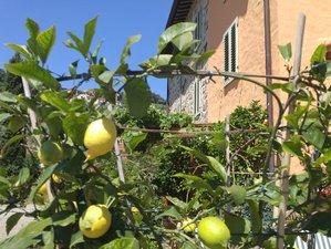 6 Days Yoga & Hiking Retreat in Tuscany, Italy