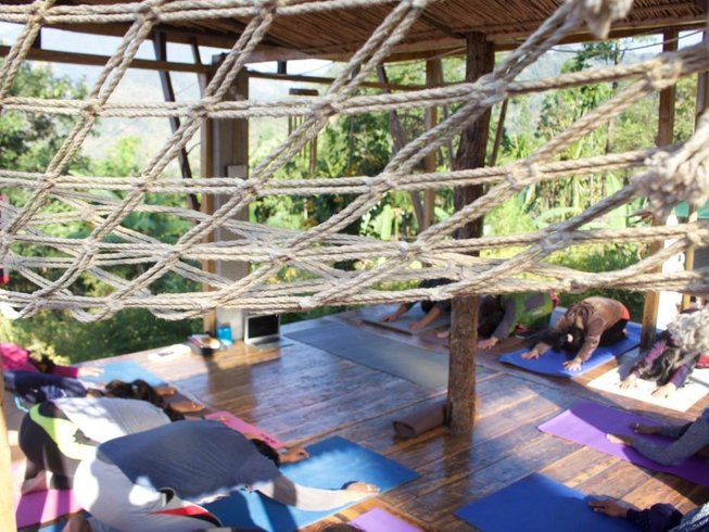 6 Days Yoga and Detox Retreat in Gorubathan, India