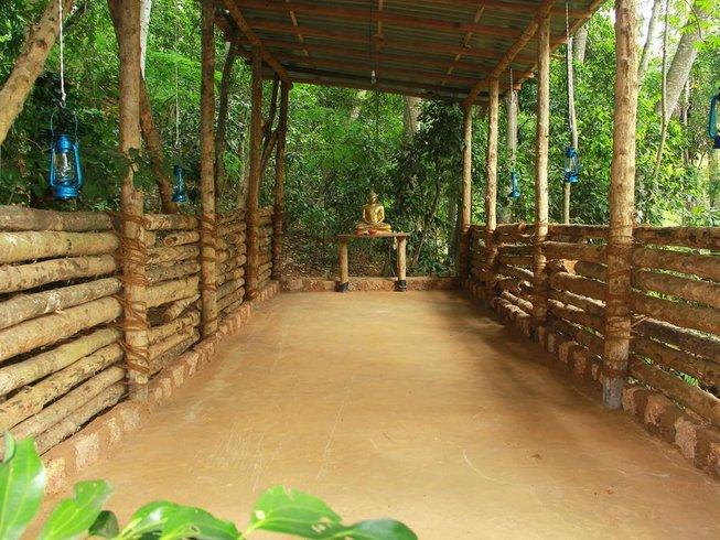 3 Tage Entspannender Yoga Retreat in Kandy, Sri Lanka
