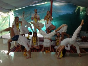 52 Days 500-Hour Yoga Teacher Training in Rishikesh, India
