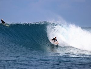 5 Day All Levels Surf Camp in Thimarafushi, Atoll