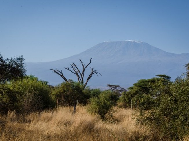 3 Days Guided Amboseli National Park and Tsavo East National Park Safari in Kenya