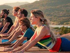 7 Day 50-Hour Yin and Intrinsic Womb Wisdom Yoga Teacher Training