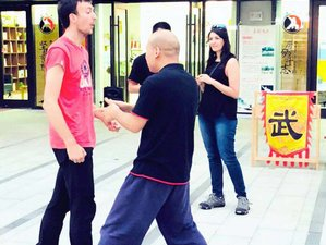 7 Days Traditional Chinese Martial Arts, Taichi, and Kung Fu Training in Shanghai, China