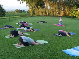 6 Days Movement Therapy and Yoga Retreat in Hawaii