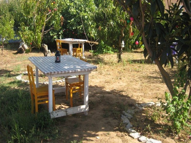 8 Days Lemon Tree, Surf and Yoga Retreat in Lourinhã, Portugal