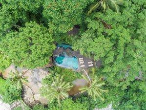 8 Days Adiwana Svarga Loka Mindfulness and Yoga Retreat in Ubud, Bali, Indonesia