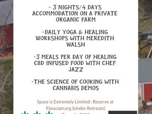 4 Days Farm to Table CBD Infused Food and Yoga Retreat in the Blue Ridge Mountains, USA
