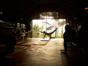 10 Days One Light Meditation and Yoga Retreat in Kerala, India