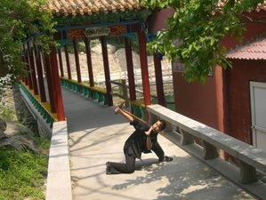 4 Months Authentic Basic Kung Fu in Handan, China