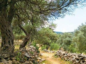 4 Days Rejuvenation Weekend Yoga Holiday: Massage, Hammam, and Trekking in Bodrum District, Turkey