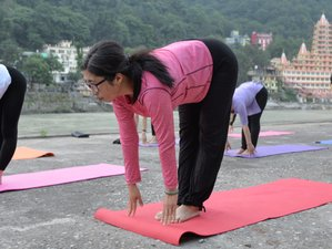 4 Day Yoga Retreat for Complete Beginners in Rishikesh