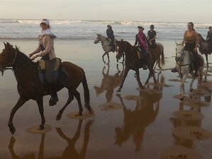 8 Day Quad Riding for Non-Riders and Horse Riding Holiday in Tiznit