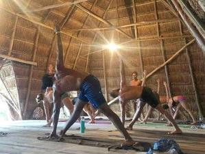 8 Day In-Depth Ashtanga and Hatha Primary Series Yoga Retreat in Bacalar