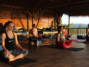 21 Day 200 Hours Yoga Teacher Training in Magical Canggu, Bali