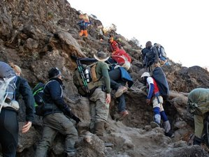 7 Days Mount Kilimanjaro Machame Route Safari Tour in Tanzania