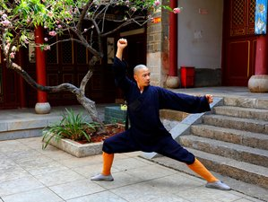 14 Day Self-Paced Online Shaolin Head and Neck Health Training: Part 1 of Movement Medicine