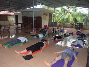 14 Tage Vielfältige Ayurveda und Yoga Kur in Azhiyur, Kerala