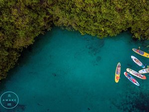 5 días de cenotes, mar caribeño y playas increíbles en un retiro de yoga en Tulum, México