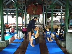 21 Day 200-Hour Hatha Yoga Teacher Training in Mysore