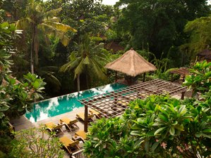 4 Days Relaxation Wellness Meditation and Yoga Retreat Ubud, Bali