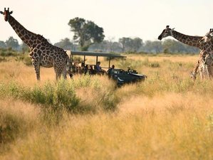 7 Days Greater Kruger National Park Safari