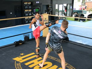 22 Days Rigorous Muay Thai Camp in Koh Samui, Thailand