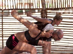 6 Days 50-Hour Yin Fascial Yoga Teacher Training India