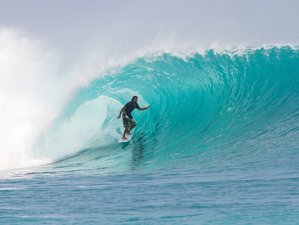 12 Days Mentawai Surf Camp and Fishing