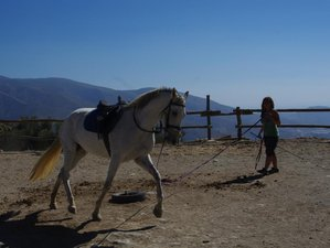 "7 Days ""Working with Horses"" Horse Riding Holiday Spain"