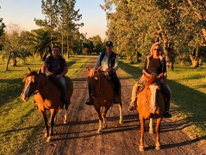3 Day Horse Riding Holiday at a Traditional Argentine Estancia in Gualeguaychu, Entre Ríos