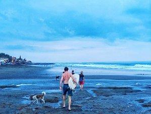 7 Days Soul Yoga Holiday and Surf Camp Pererenan, Mengwi, Bali