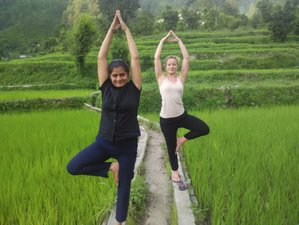 5 Days Yoga, Detox and Meditation Retreat in Himalayan Village