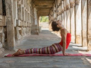 4 Days Ashtanga Yoga Retreat Brazil