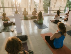 26 Days 200-hour Level 1 Yoga Teacher Training in Goa, India